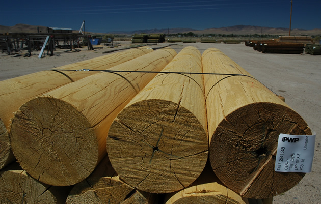 Large Poles Amp Fencing C Amp R Forest Products California